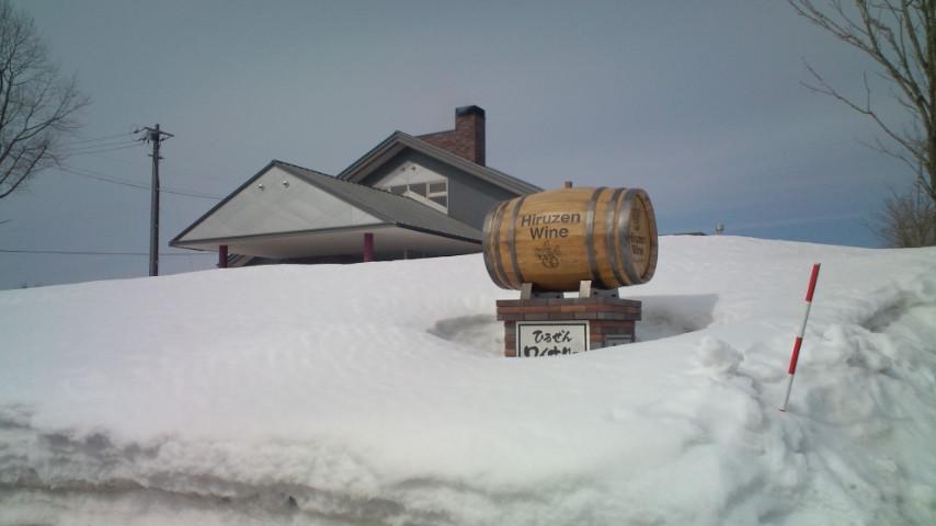 snow & wine